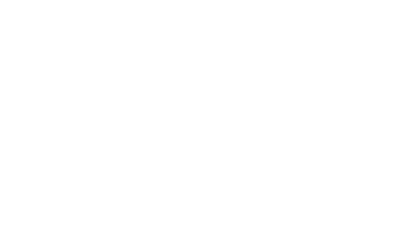 F4GI Fund for Guaranteed Income